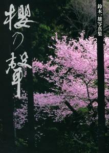 櫻乃聲(さくらのこえ)